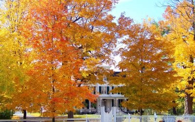 Preparing Your Home for the Fall Season
